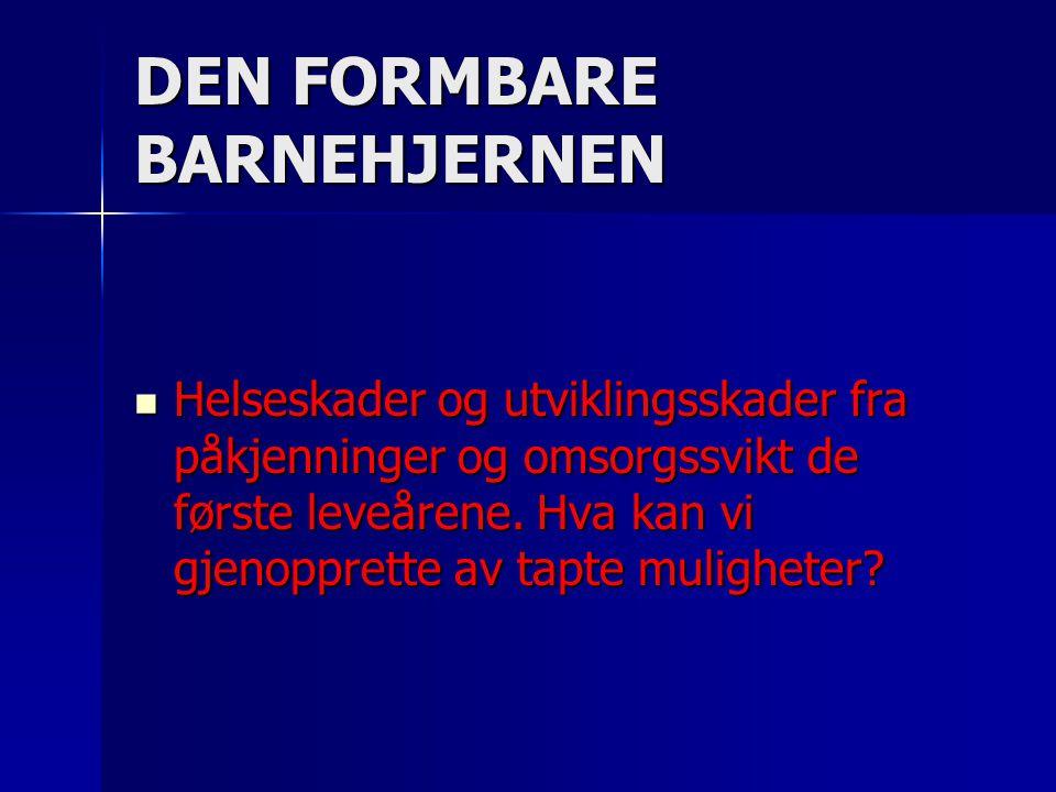DEN FORMBARE BARNEHJERNEN