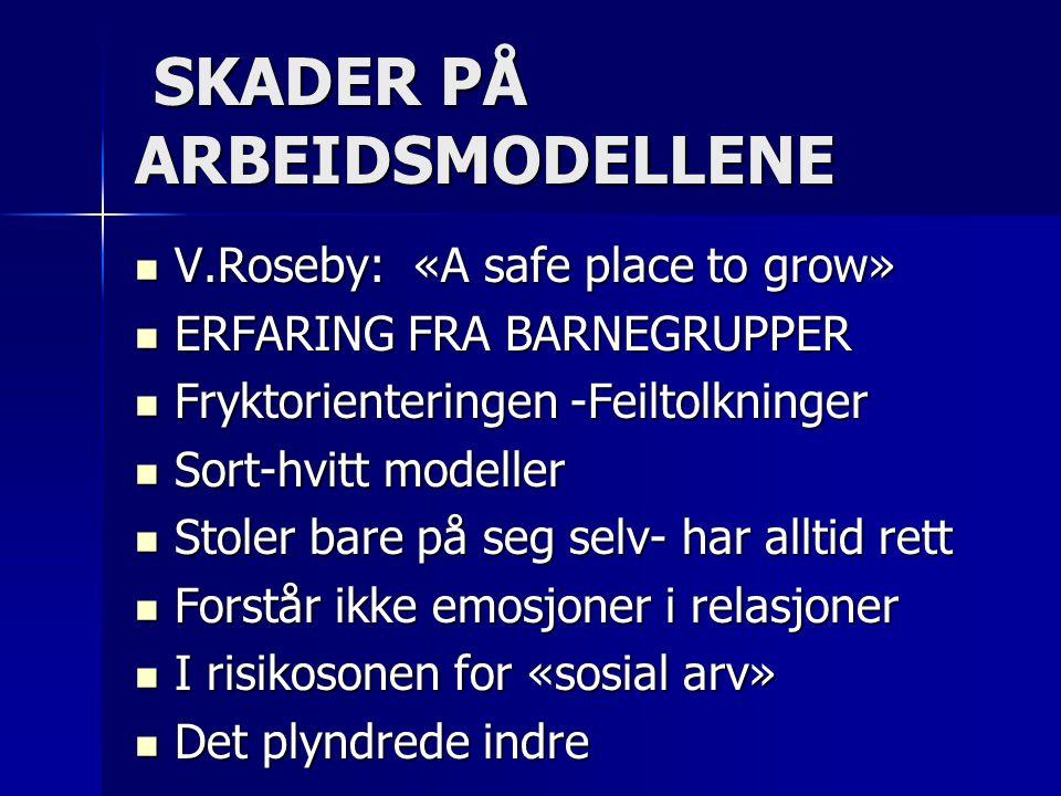 SKADER PÅ ARBEIDSMODELLENE