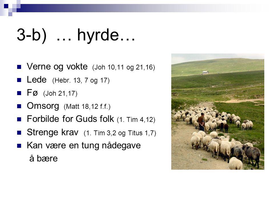 3-b) … hyrde… Verne og vokte (Joh 10,11 og 21,16)