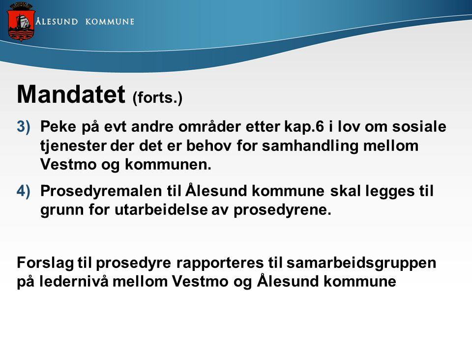 Mandatet (forts.) Peke på evt andre områder etter kap.6 i lov om sosiale tjenester der det er behov for samhandling mellom Vestmo og kommunen.