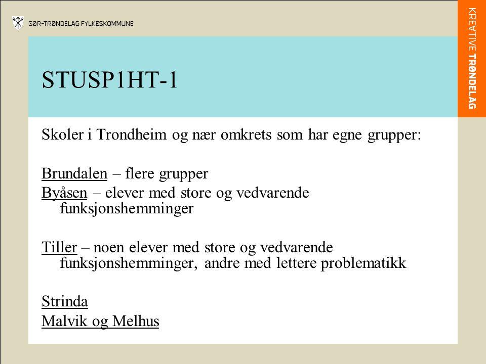 STUSP1HT-1 Skoler i Trondheim og nær omkrets som har egne grupper: