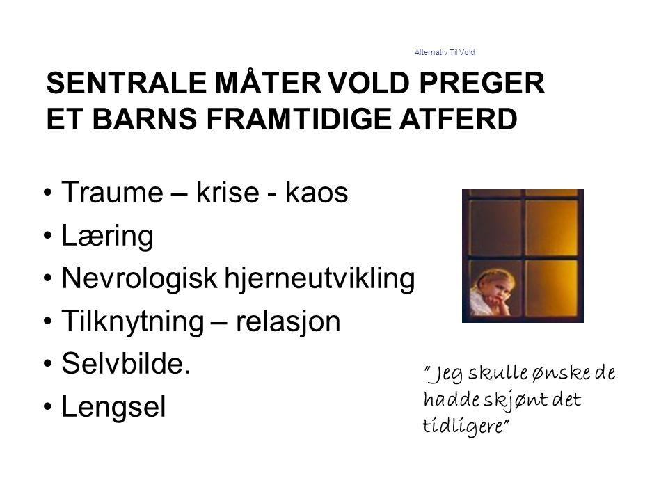 SENTRALE MÅTER VOLD PREGER ET BARNS FRAMTIDIGE ATFERD