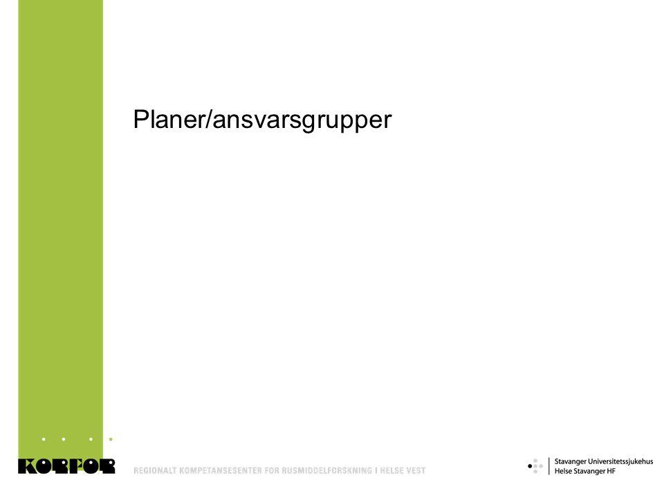 Planer/ansvarsgrupper