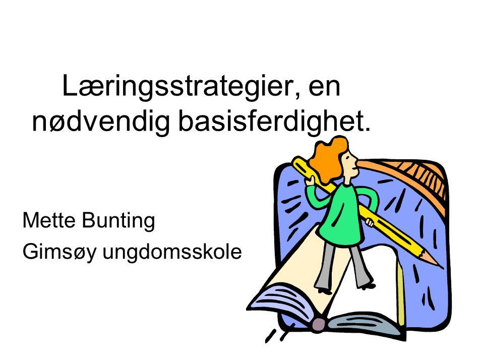 Læringsstrategier, en nødvendig basisferdighet.