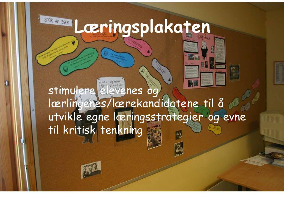 Læringsplakaten stimulere elevenes og lærlingenes/lærekandidatene til å utvikle egne læringsstrategier og evne til kritisk tenkning.