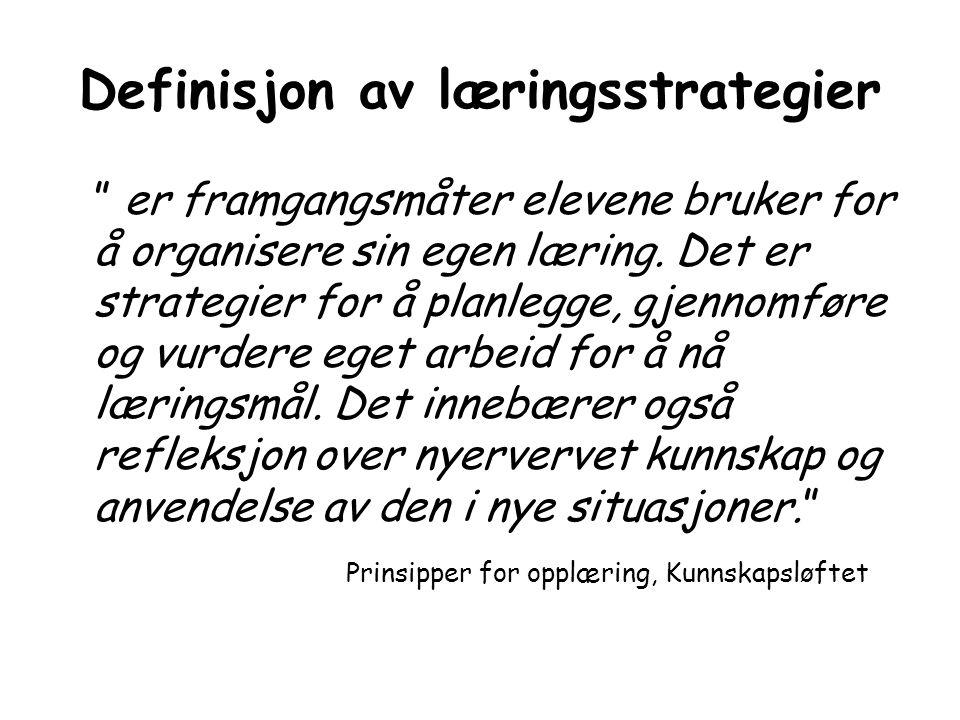 Definisjon av læringsstrategier