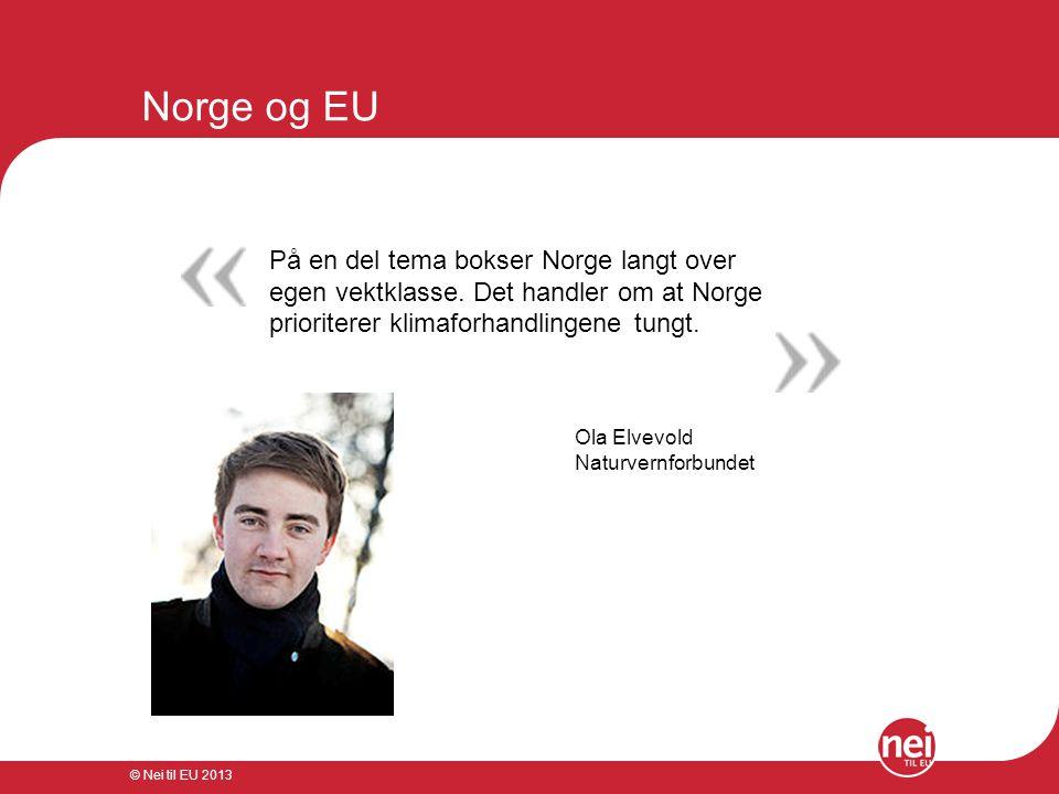 Norge og EU På en del tema bokser Norge langt over egen vektklasse. Det handler om at Norge prioriterer klimaforhandlingene tungt.