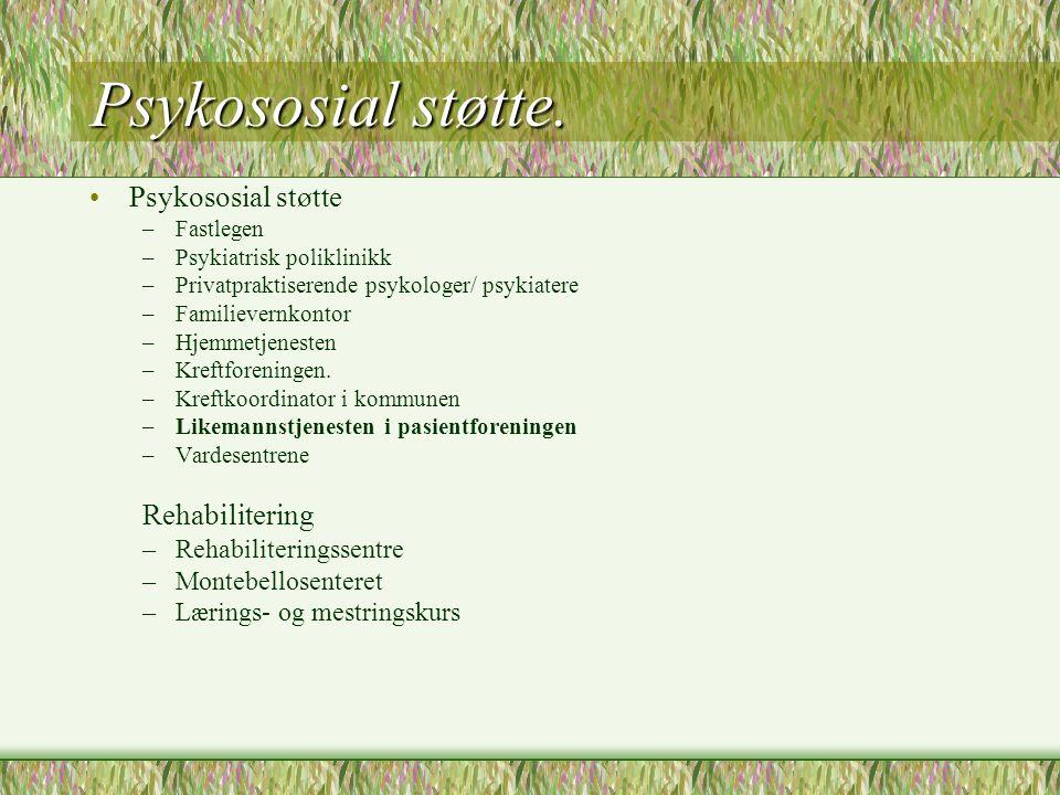Psykososial støtte. Psykososial støtte Rehabilitering