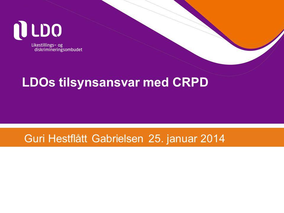 LDOs tilsynsansvar med CRPD