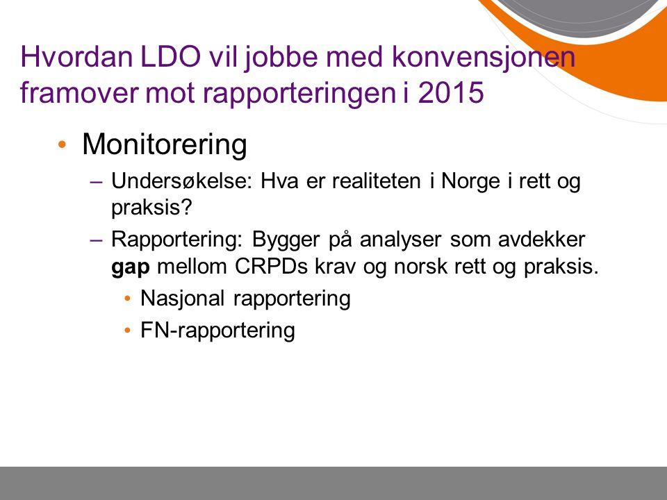 Hvordan LDO vil jobbe med konvensjonen framover mot rapporteringen i 2015