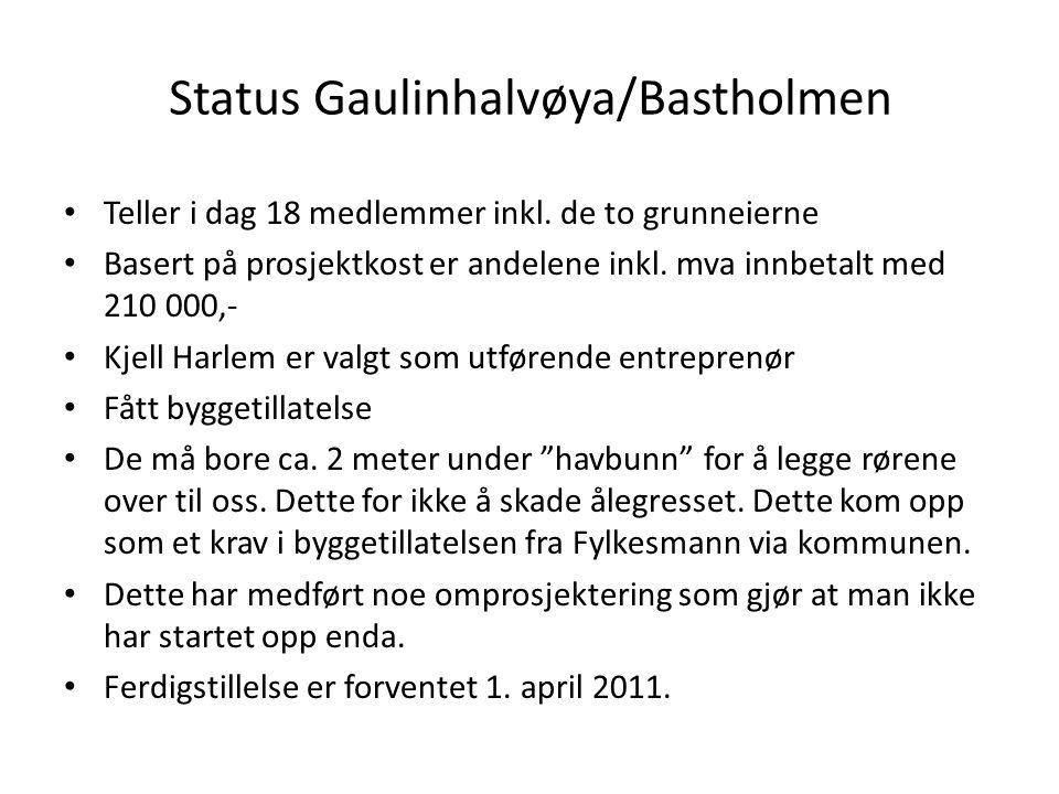 Status Gaulinhalvøya/Bastholmen
