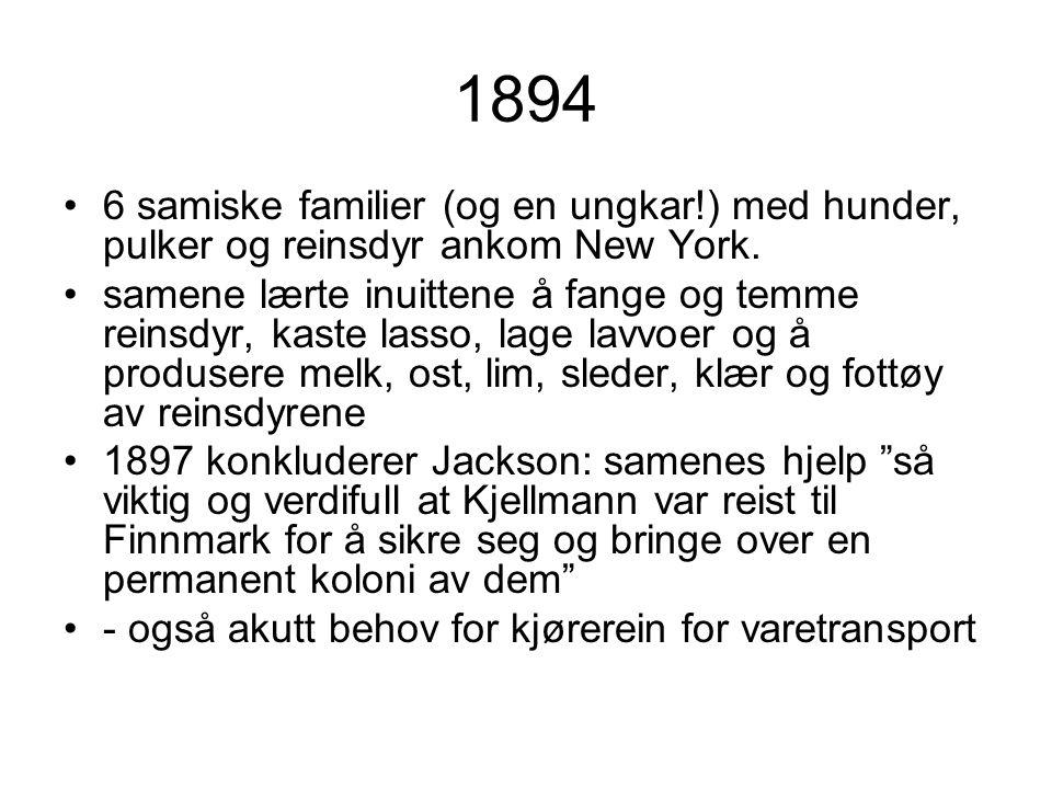 1894 6 samiske familier (og en ungkar!) med hunder, pulker og reinsdyr ankom New York.