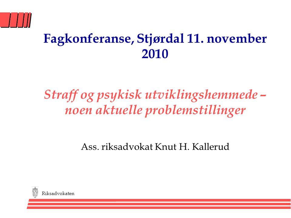 Fagkonferanse, Stjørdal 11. november 2010