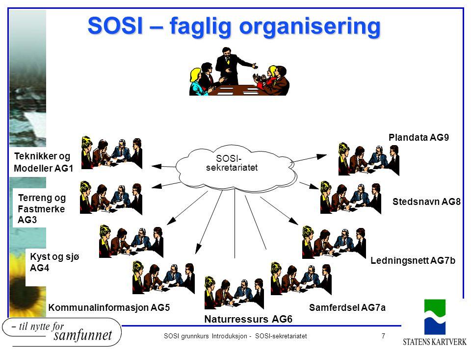 SOSI – faglig organisering