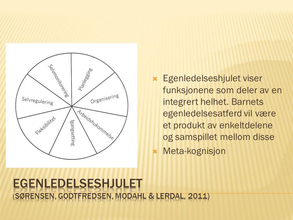 Egenledelseshjulet (Sørensen, godtfredsen, Modahl & Lerdal, 2011)