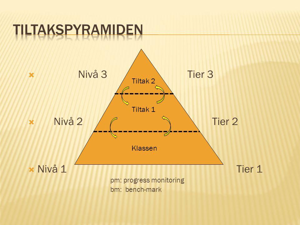 Tiltakspyramiden Nivå 3 Tier 3 Nivå 2 Tier 2 Nivå 1 Tier 1 Tiltak 2