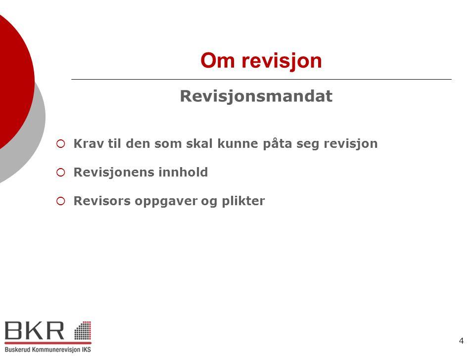 Om revisjon Revisjonsmandat