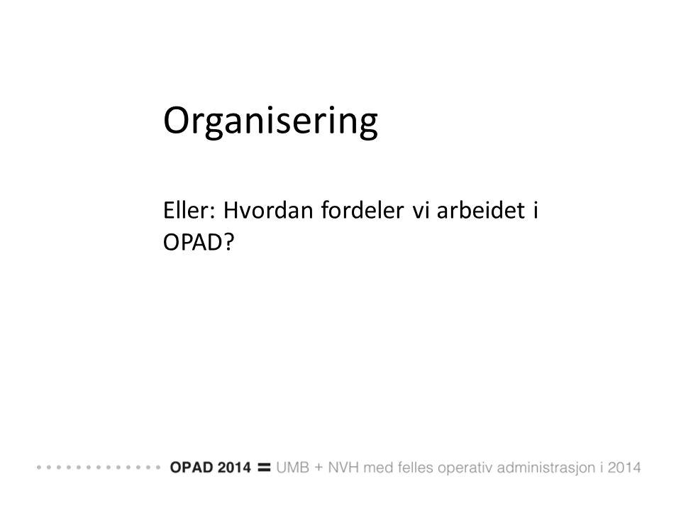 Organisering Eller: Hvordan fordeler vi arbeidet i OPAD