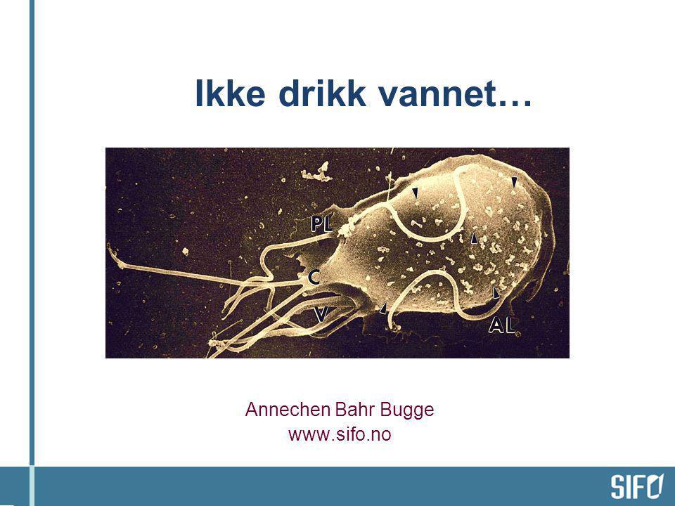 Annechen Bahr Bugge www.sifo.no