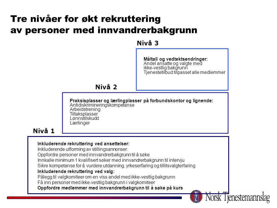 Tre nivåer for økt rekruttering av personer med innvandrerbakgrunn