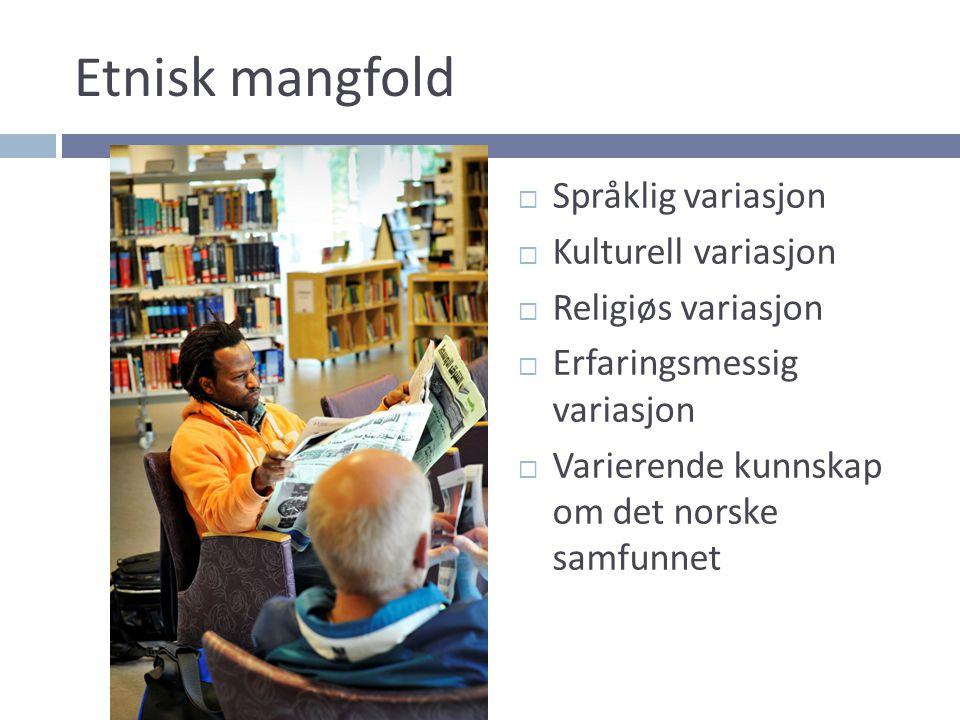 Etnisk mangfold Språklig variasjon Kulturell variasjon