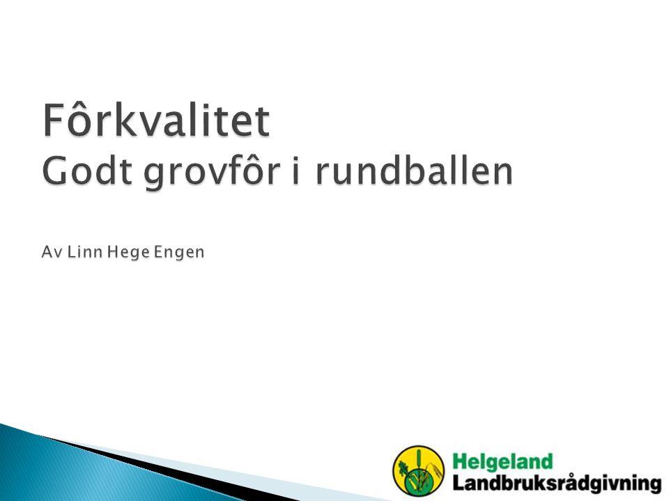 Fôrkvalitet Godt grovfôr i rundballen Av Linn Hege Engen