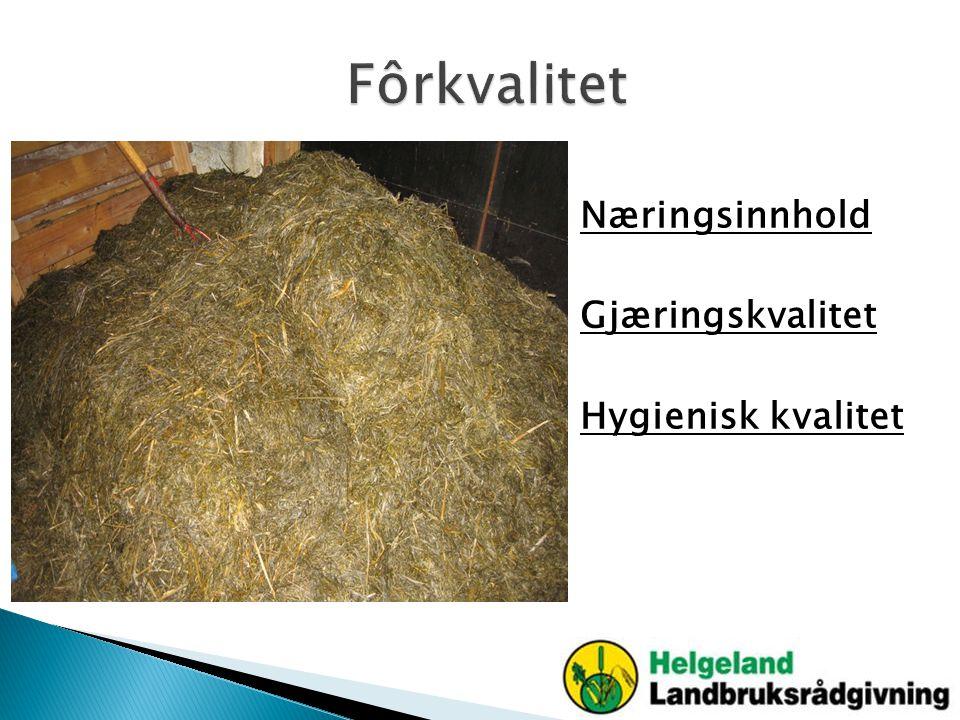 Fôrkvalitet Næringsinnhold Gjæringskvalitet Hygienisk kvalitet
