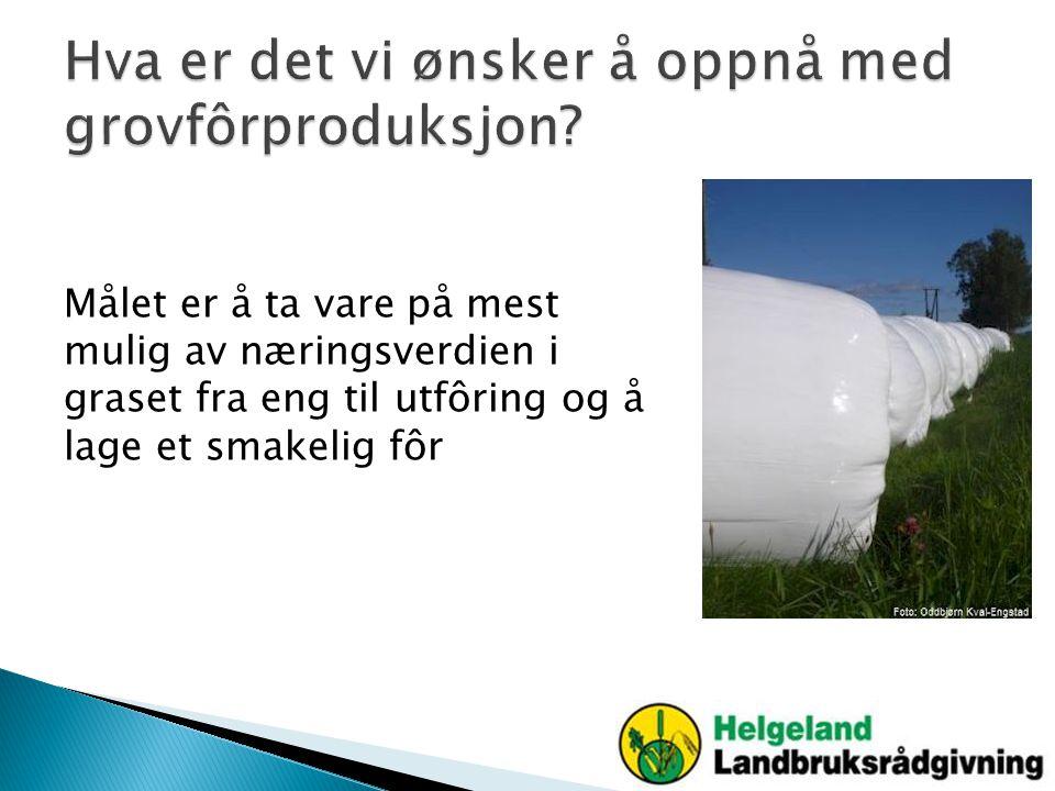Hva er det vi ønsker å oppnå med grovfôrproduksjon