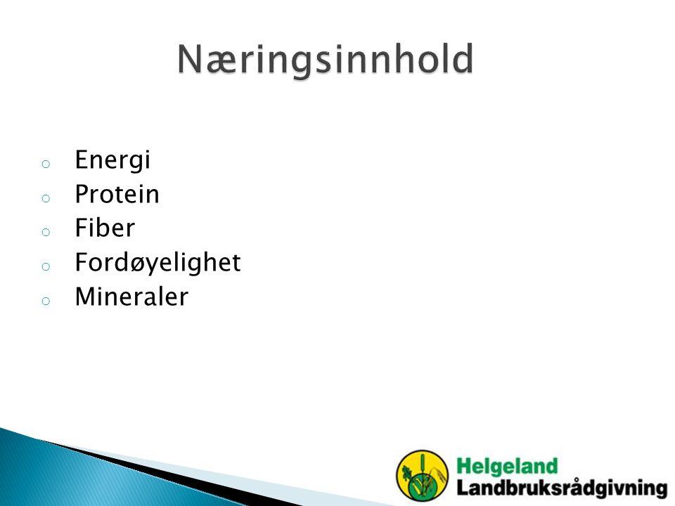 Næringsinnhold Energi Protein Fiber Fordøyelighet Mineraler