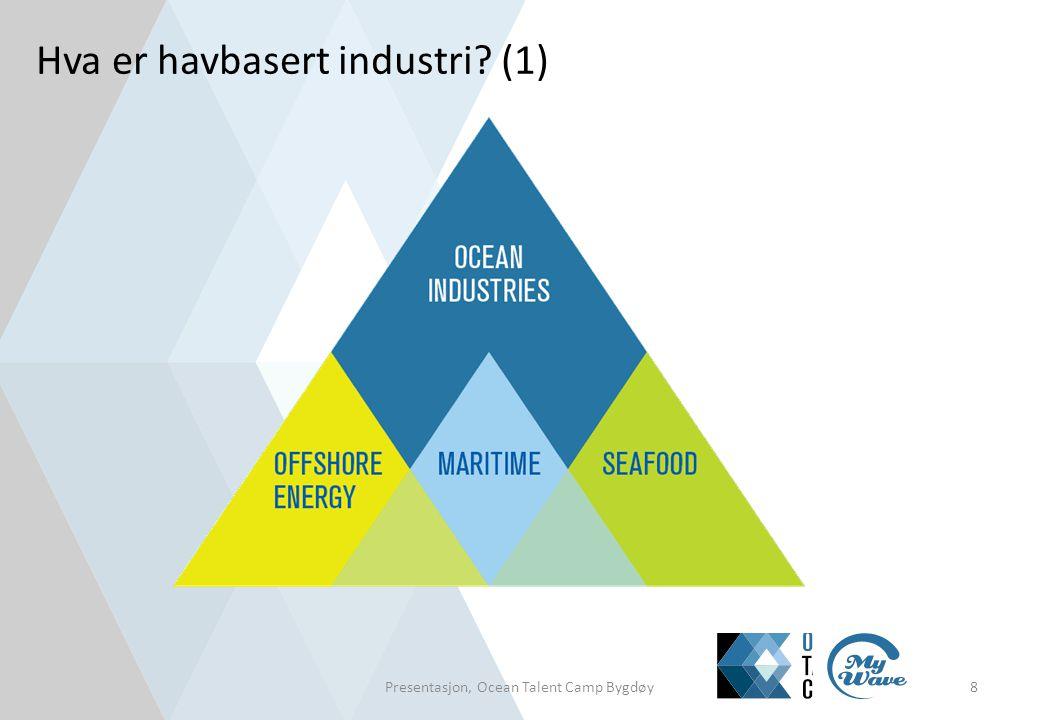 Hva er havbasert industri (2)