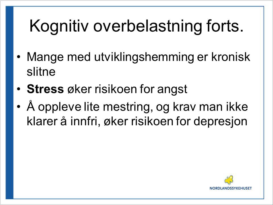 Kognitiv overbelastning forts.