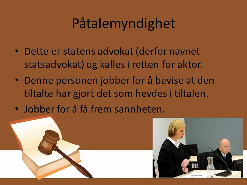 Påtalemyndighet Dette er statens advokat (derfor navnet statsadvokat) og kalles i retten for aktor.