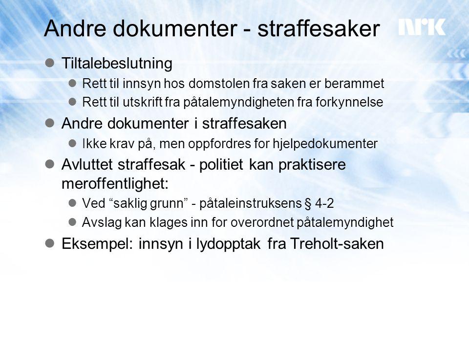 Andre dokumenter - straffesaker
