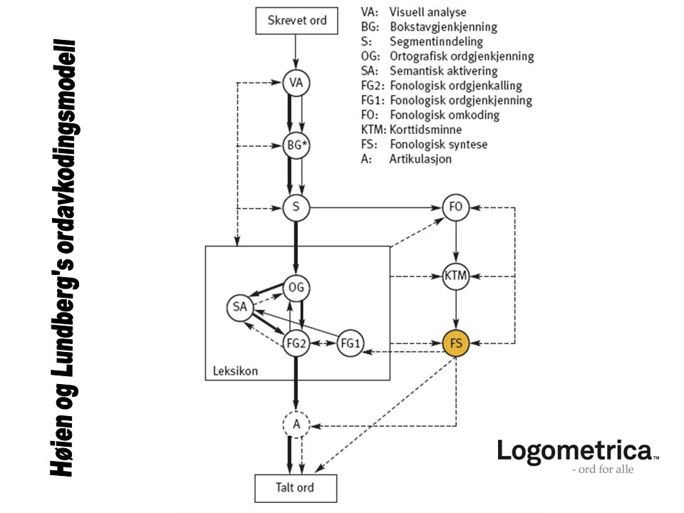 Høien og Lundberg s ordavkodingsmodell