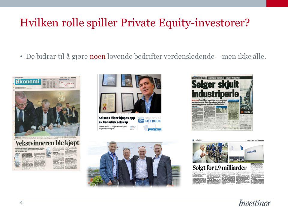 Hvilken rolle spiller Private Equity-investorer