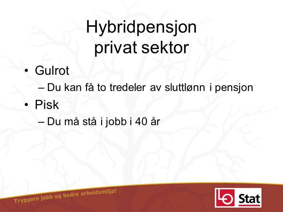 Hybridpensjon privat sektor