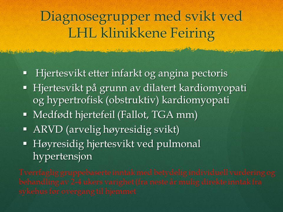 Diagnosegrupper med svikt ved LHL klinikkene Feiring