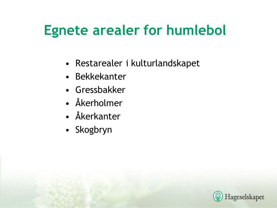 Egnete arealer for humlebol