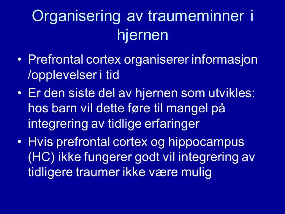 Organisering av traumeminner i hjernen