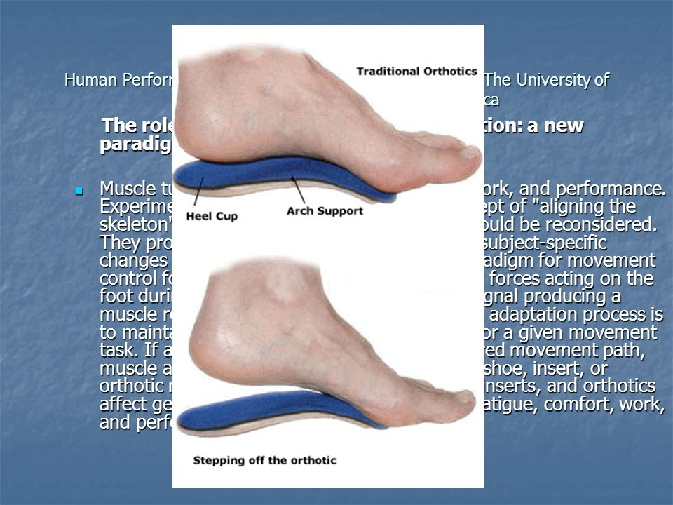 The role of impact forces and foot pronation: a new paradigm.