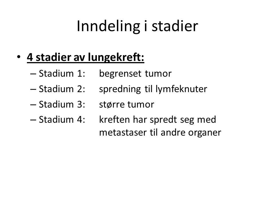 Inndeling i stadier 4 stadier av lungekreft: