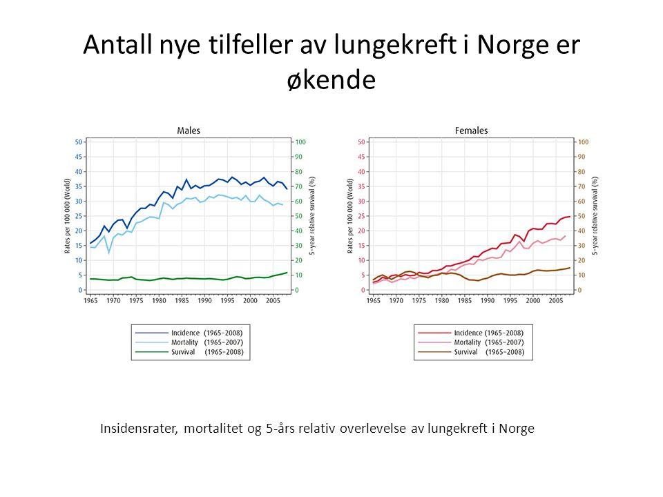 Antall nye tilfeller av lungekreft i Norge er økende