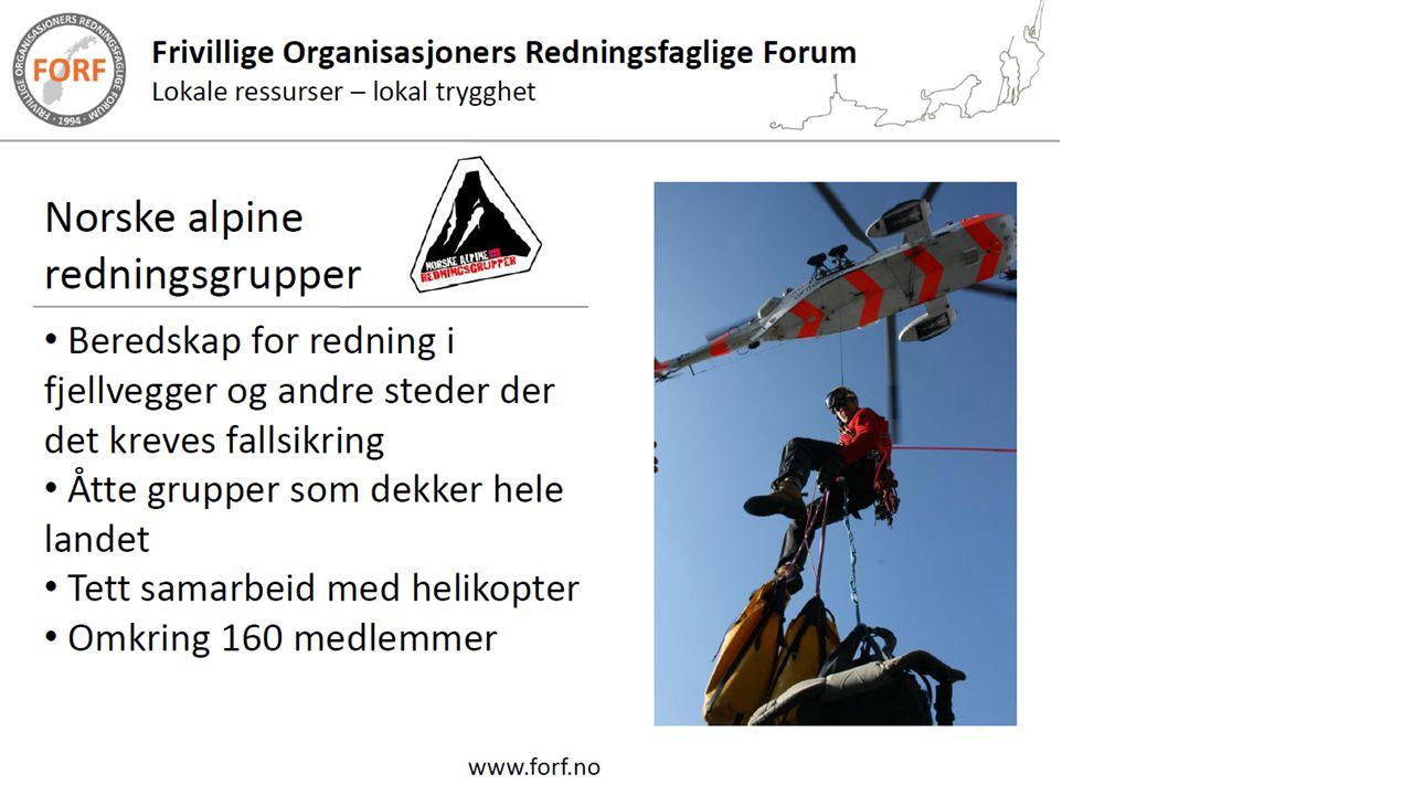 Ingen egen gruppe i Sør-Trøndelag