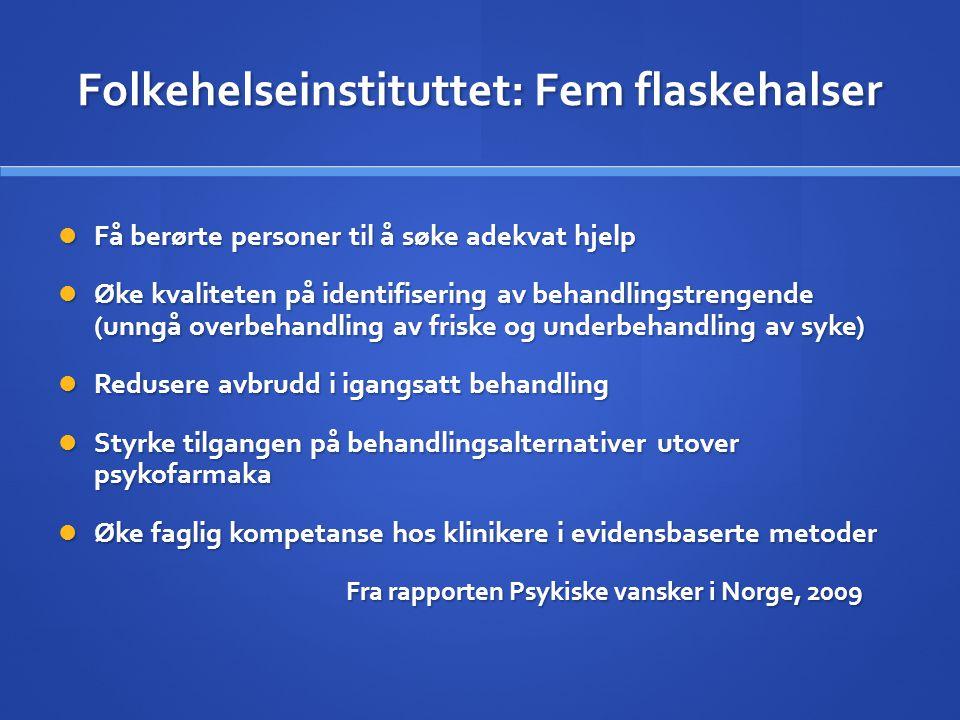 Folkehelseinstituttet: Fem flaskehalser