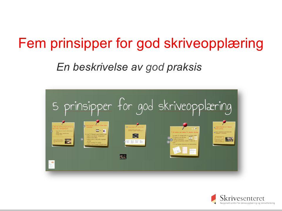 Fem prinsipper for god skriveopplæring