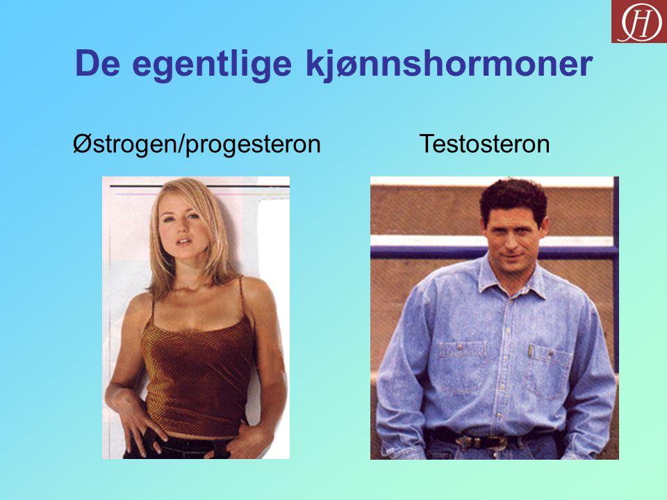 De egentlige kjønnshormoner