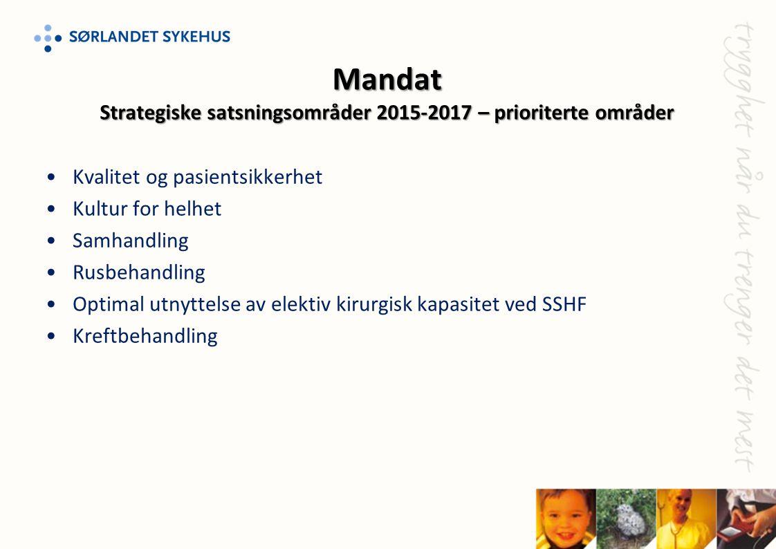 Mandat Strategiske satsningsområder 2015-2017 – prioriterte områder
