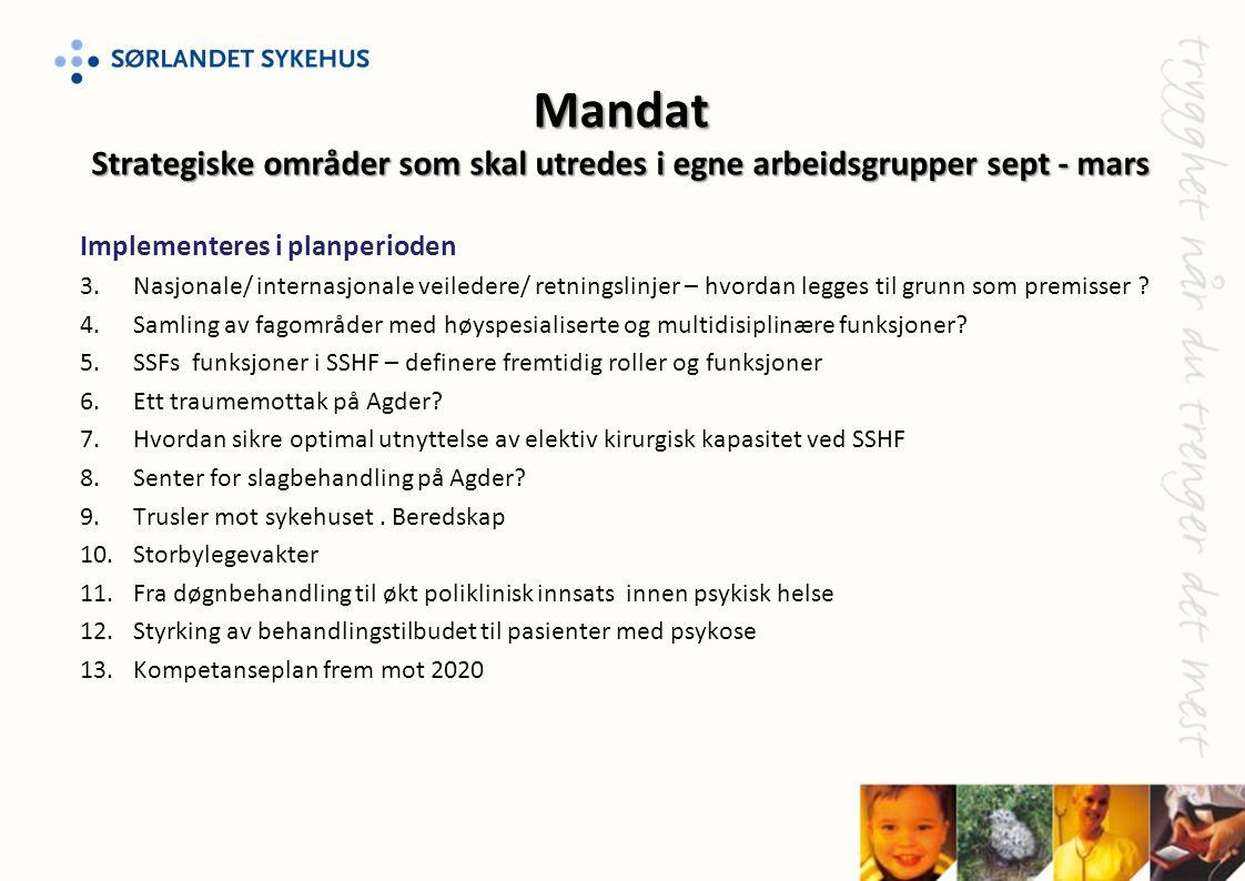 Mandat Strategiske områder som skal utredes i egne arbeidsgrupper sept - mars