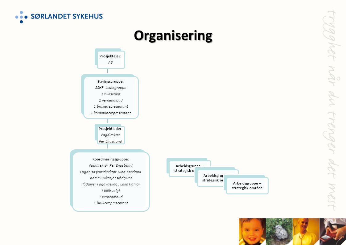 Arbeidsgruppe – strategisk område