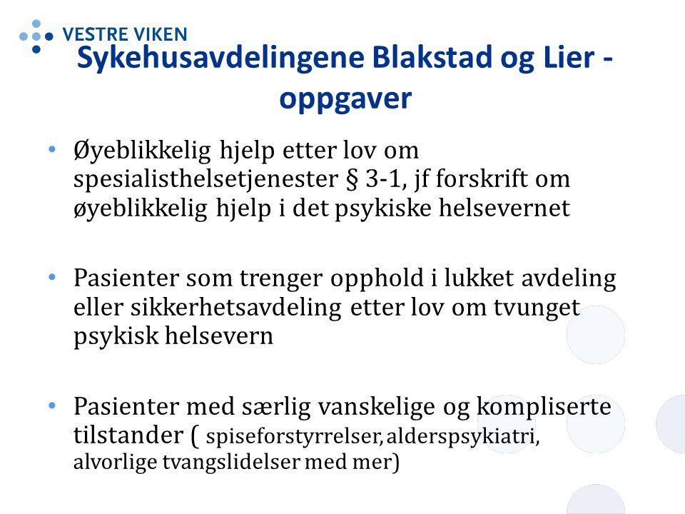 Sykehusavdelingene Blakstad og Lier - oppgaver